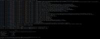 pegasus-analyzer-output.png